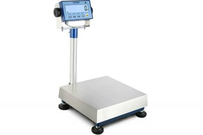 Bench Scales Buying Guide